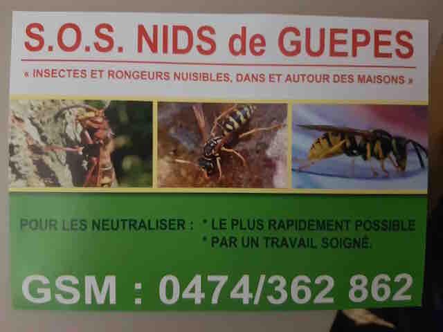 Entreprise M.V. SOS NIDS DE GUEPE